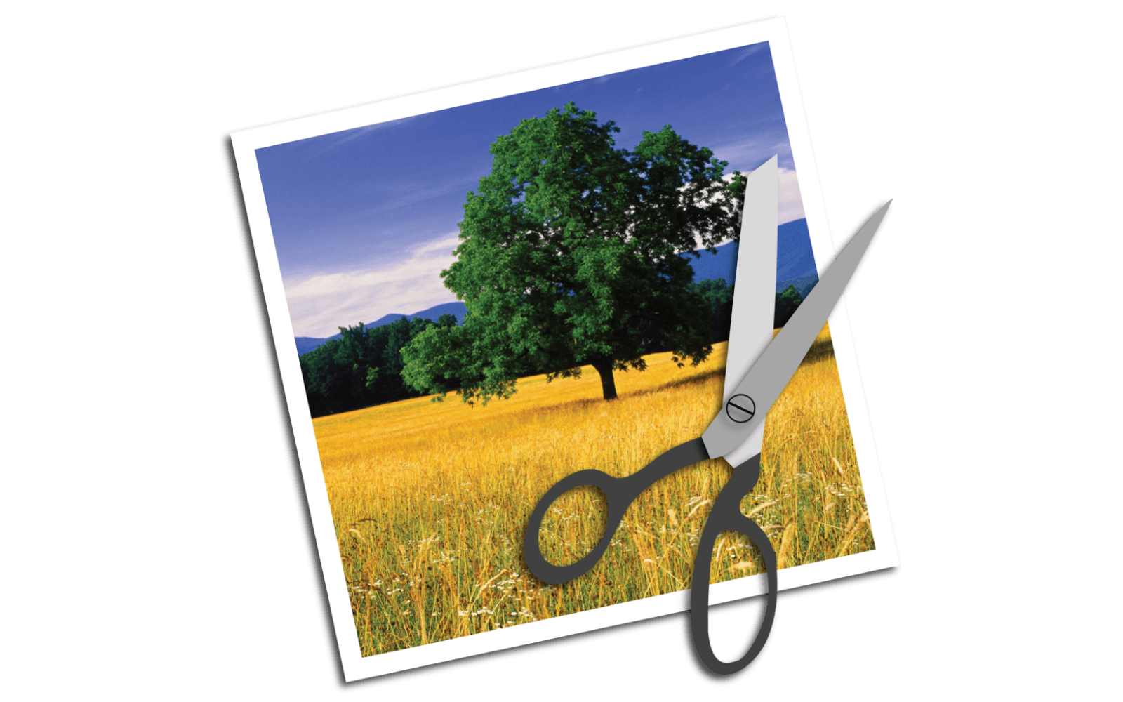 How to Crop an Image on Mac OS X